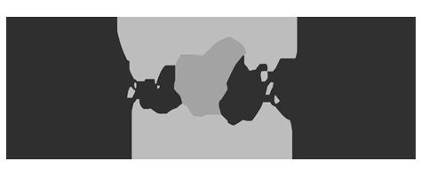 Logo-Fashion4wellness-grey